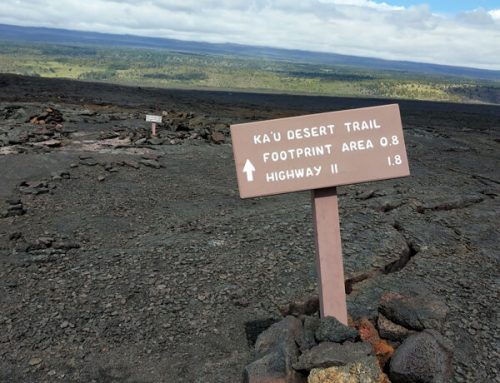 Kaʻū Desert Hike at Hawai'i Volcanoes National Park