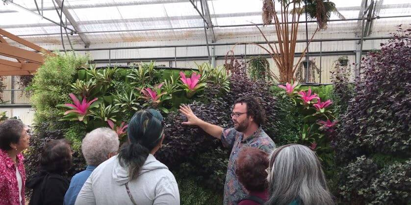 Akatsuka Orchid Gardens vertical plants
