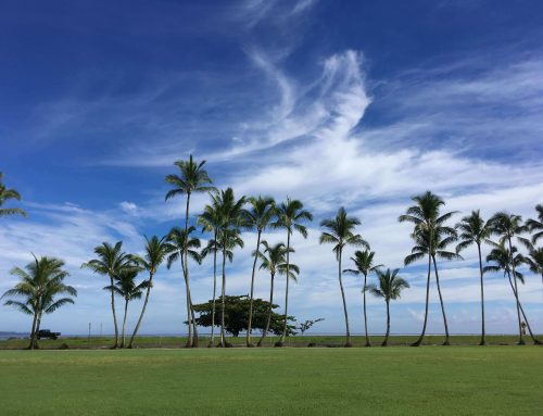 Big Island Travel Itinerary & Tips