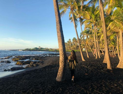 Black Sand Beach On Big Island