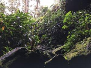 lava tube entrance 2